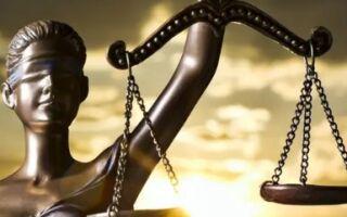 Зачем нужна профессиональная консультация юриста